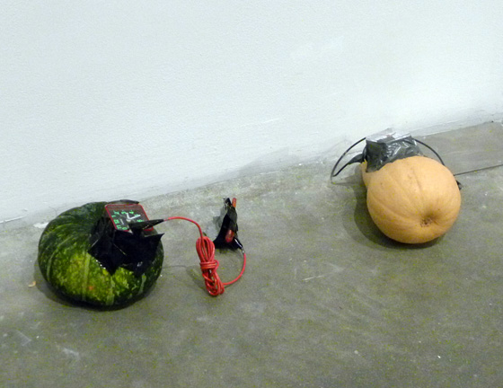 David Ter-Oganyan, This Is Not a Bomb, 2011
