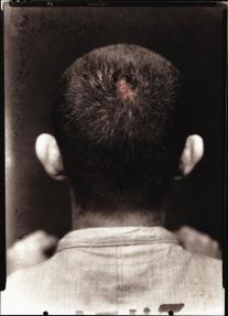 Rosângela Rennó, Scorpion, 1998, From the series: Vulgo [Alias], 1998-1999 Laminated digital print, 165 x 118 cm, Collection Francisco Fino. Photo: César Barreto, © Rosângela Rennó.