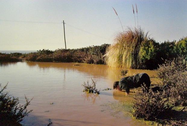 João Tabarra (1966), Lake + Fool, 2000, Col. MNAC – Museu do Chiado. Inv. 2417. Doado por Cristina Guerra e Filomena Soares. Cortesia MNAC – Museu do Chiado.