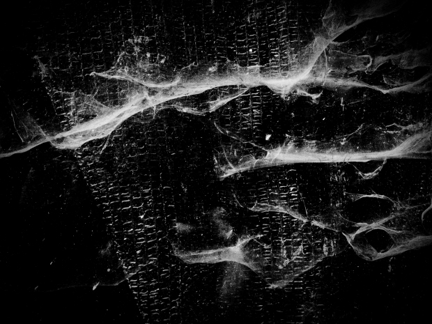 Susana Paiva, da série Electronic Landscapes © Susana Paiva. Cortesia da artista.