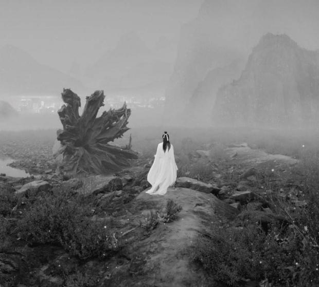 Yang Yongliang, The Silent Valley - A Wolf and Landmines, 2012, 100 x 200 cm edição de 7/ 66 x 132 cm, edição de 8.