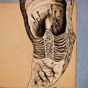 Sofia Borges, «Indecifrável #1 / Indecipherable #1», 2012