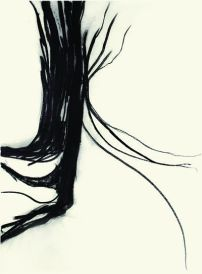 Teresa Gonçalves Lobo, Untitled, 2007, charcoal on paper, 76x57cm. Cortesia da artista.