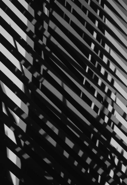 Alexandre Estrela, Le Moiré, 2010 (pormenor) projecção vídeo, DVD (OAL), ecrã em vidro, som mono, loop 100 x 70 cm (dimensão da projecção). © Alexandre Estrela. Cortesia do artista e da Fundação de Serralves.