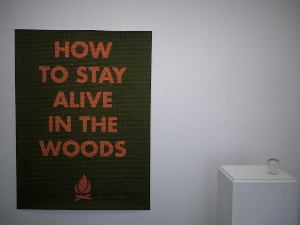 vista da exposição How to Stay Alive in the Woods de Ana Jotta na galeria Belo-Galsterer, Lisboa, 2013.