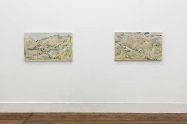 João Queiroz , vista da exposição 'A noiva dourada' na Galeria Vera Cortês, Lisboa, 2013. Cortesia do artista e da Galeria Vera Cortês, Lisboa, 2013.