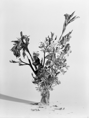 Nádia Rodrigues Ribeiro, Sem título [Untitled] (11.07.2012, 13h30), 2012 Impressão de gelatina e sais de prata / Gelatin silver print, 9 x 12 cm Cortesia da artista / Courtesy of the artista.