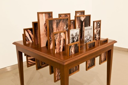 Vasco Araújo, Botânica, 2012. Esculturas/ Sculpture Mesa de madeira, Mesa de madeira, 21 fotografias digitais, molduras de madeira e metal/ Wood table, 21 Digital Photographs; wood and metal frames. Dimensões/ Dimensions: 100x100x120cm. Cortesia do artista, da galeria Baginski e do MNAC-Museu do Chiado.