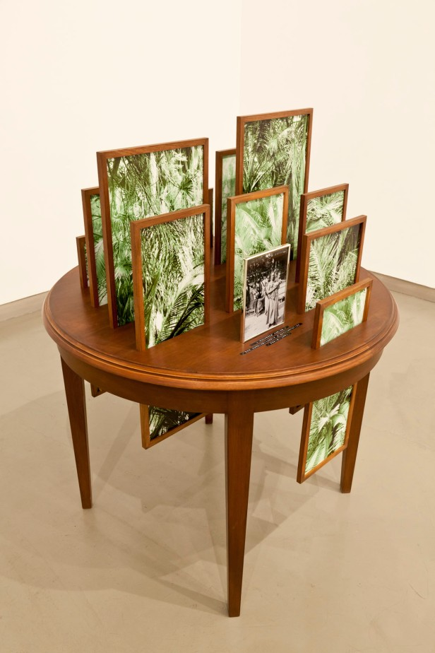 Vasco Araújo, Botânica, 2012. Esculturas/ Sculpture Mesa de madeira, 15 fotografias digitais, molduras de madeira e metal/ Wood table, 15 Digital. Photographs; wood and metal frames. Dimensões/ Dimensions: 100x100x120cm. Cortesia do artista, da galeria Baginski e do MNAC-Museu do Chiado.