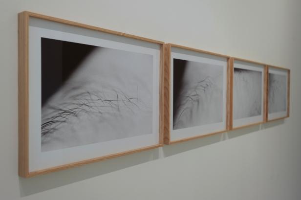 Ângelo de Sousa, 'Encontros com as formas. Fotografias e filmes' na Galeria da Fundação EDP (Porto). Cortesia da Fundação EDP.
