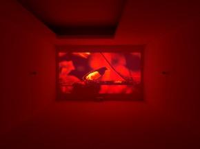 Diogo Evangelista, vista da exposição Bes Revelação 2013, fotografia Filipe Braga. Cortesia BES Arte & Finança.