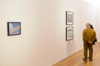 Vista da Exposição 'Esquírola' de Pedro Tudela no Palácio Vila Flor, Guimarães. Fotografia © Paulo Pacheco