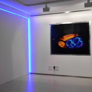 Pedro Magalhães, vista da exposição 'Proyecciones temporales 03', Projecto Interferencias. Galería Nuble, Santander, Espanha, 2014.