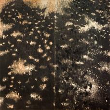 Sophie Whettnall, Dyptique Femme sans ombre 05, 2014 Madeira, tinta da china Wood, indian ink 244 × 244 cm. Fotografia da exposição 'Shadow piece' na Vera Cortês Art Agency: Bruno Lopes.
