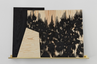 Sophie Whettnall, Shadow piece (shelf 2), 2014 Madeira, tinta da china, latão Wood, indian ink, brass 100 × 150 cm. Fotografia da exposição 'Shadow piece' na Vera Cortês Art Agency: Bruno Lopes.