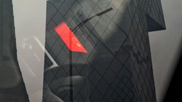 Tatiana Macedo, Five Stars. Solar – Galeria de Arte Cinemática. Imagem cortesia da artista e Solar – Galeria de Arte Cinemática.