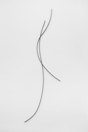 Gonçalo Barreiros, Definitivos, 2014 Ferro pintado Painted iron 331 × 80 × 1.5 cm. Exposição 'nosey parker'. Vera Cortês Art Agency.