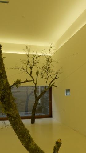 Gabriela Albergaria, vista da exposição 'Ser do ritmo anual'. Museu da Luz. © Gabriela Albergaria. Cortesia da artista.
