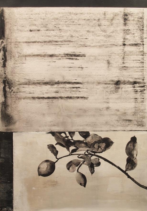 Domingos Rego S/título, 2015. Pigmento natural, ligante e acrílico sobre papel 100x70cm. Cortesia do artista e Galeria João Esteves de Oliveira.