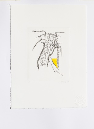 Alexandre Conefrey, Sem título/Untitled, 2014. Verniz mole, verniz duro, água-tinta e monotipia s/ papel Somerset Radiant White, 300 gr. Soft varnish, hard varnish, aquatint and monotype on 300-gram Somerset Radiant White paper 39 x 27,8 cm. Cortesia do artista e Fundação EDP.