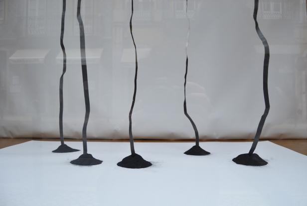 Jorge Martins, 'Cinco Linhas Quase'. A Montra, Lisboa, 2015.